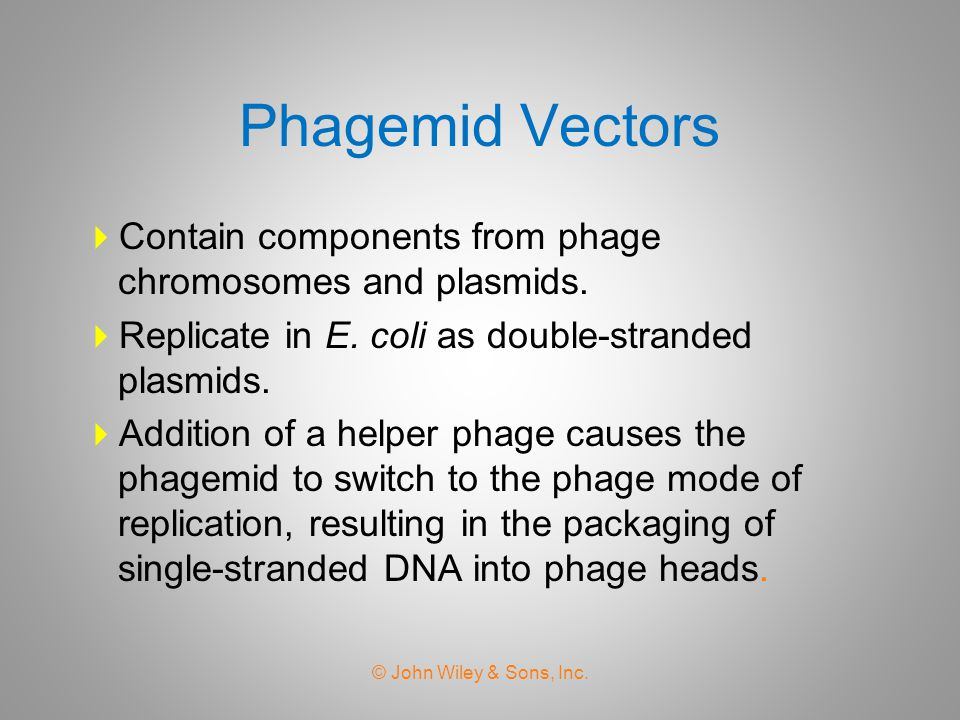 Phagemid Vectors Contain components from phage chromosomes and plasmids. Replicate in E. coli as double-stranded plasmids.