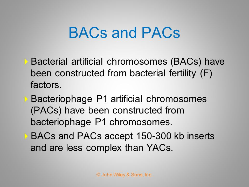 BACs and PACs Bacterial artificial chromosomes (BACs) have been constructed from bacterial fertility (F) factors.
