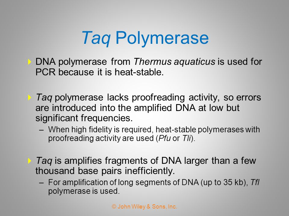 Taq Polymerase DNA polymerase from Thermus aquaticus is used for PCR because it is heat-stable.