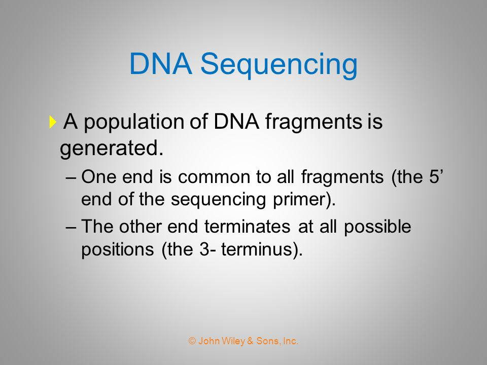 DNA Sequencing A population of DNA fragments is generated.