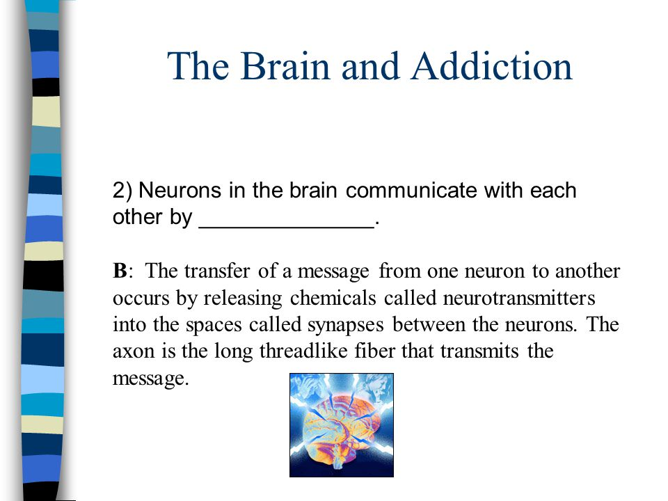 The Brain and Addiction