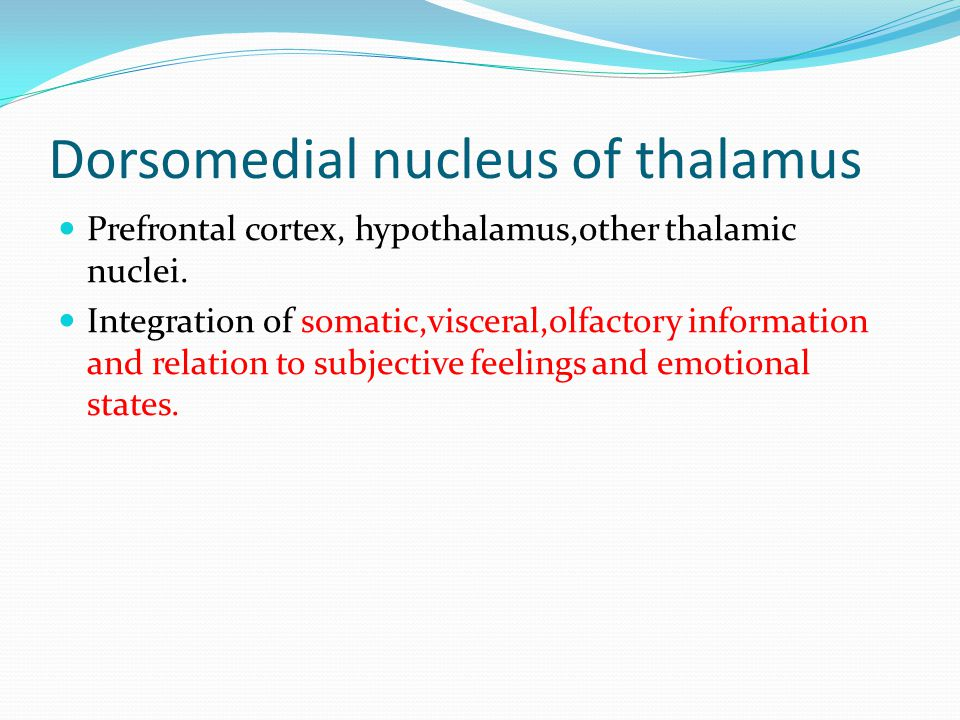 Dorsomedial nucleus of thalamus