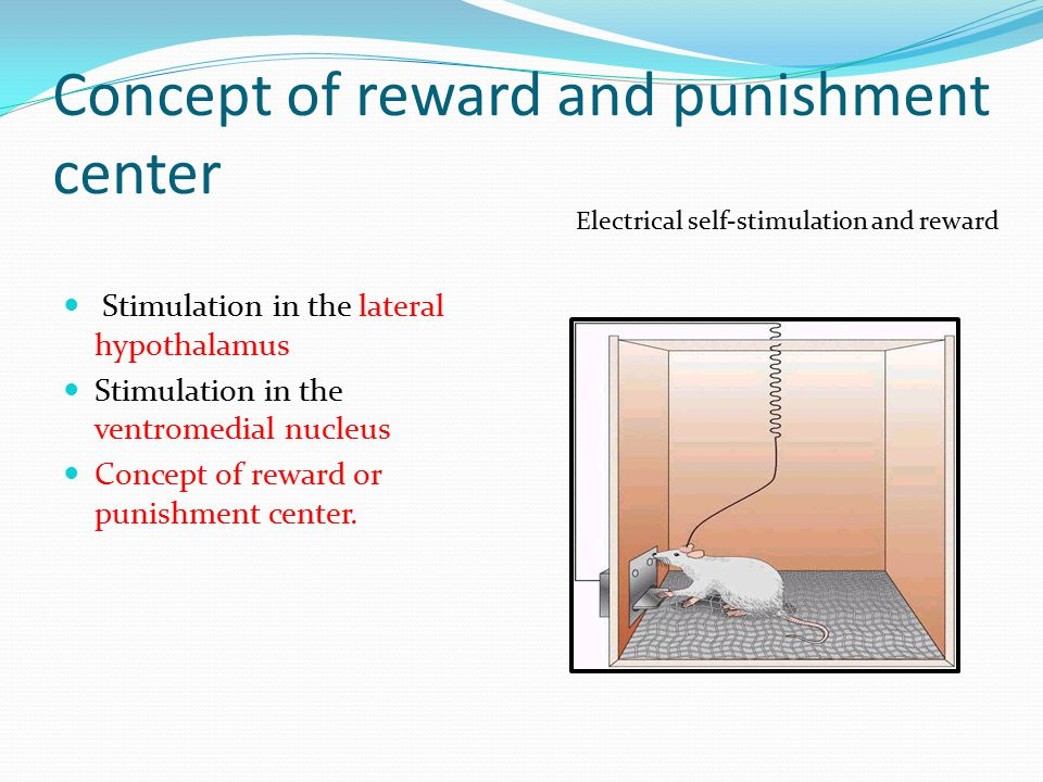 Concept of reward and punishment center