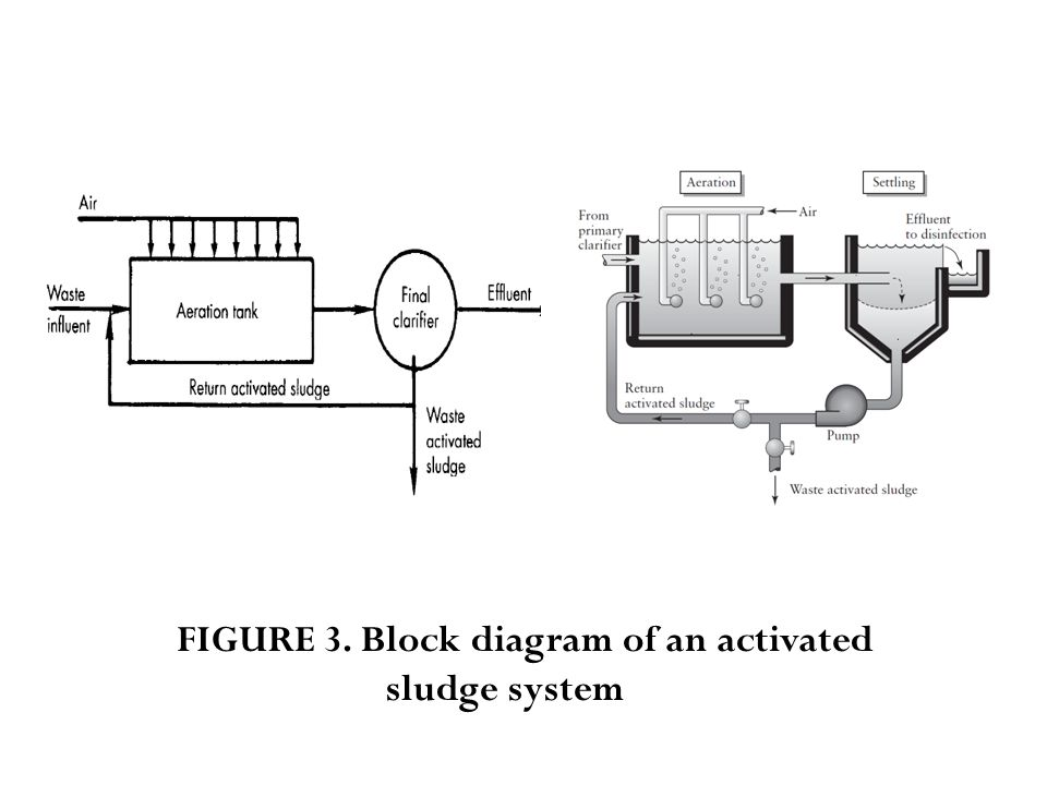 FIGURE 3. Block diagram of an activated sludge system