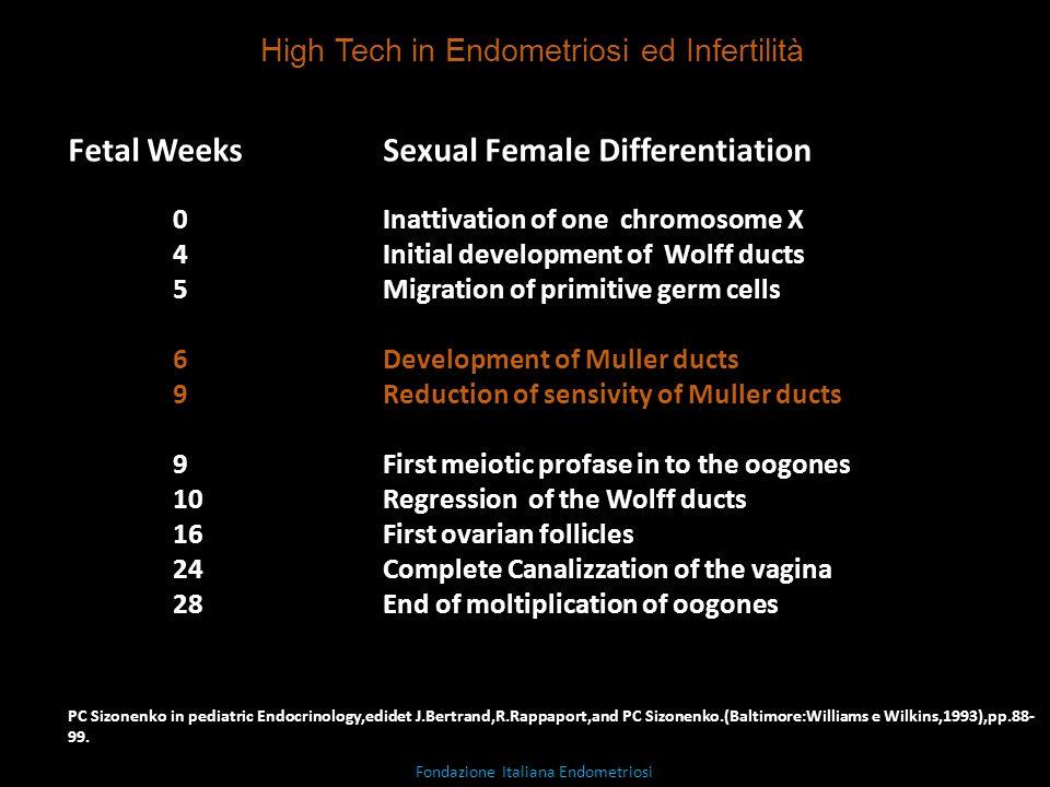 Fetal Weeks Sexual Female Differentiation