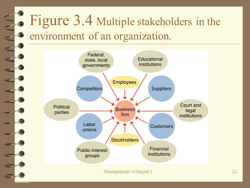 Figure 3.4 Multiple stakeholders in the environment of an organization.