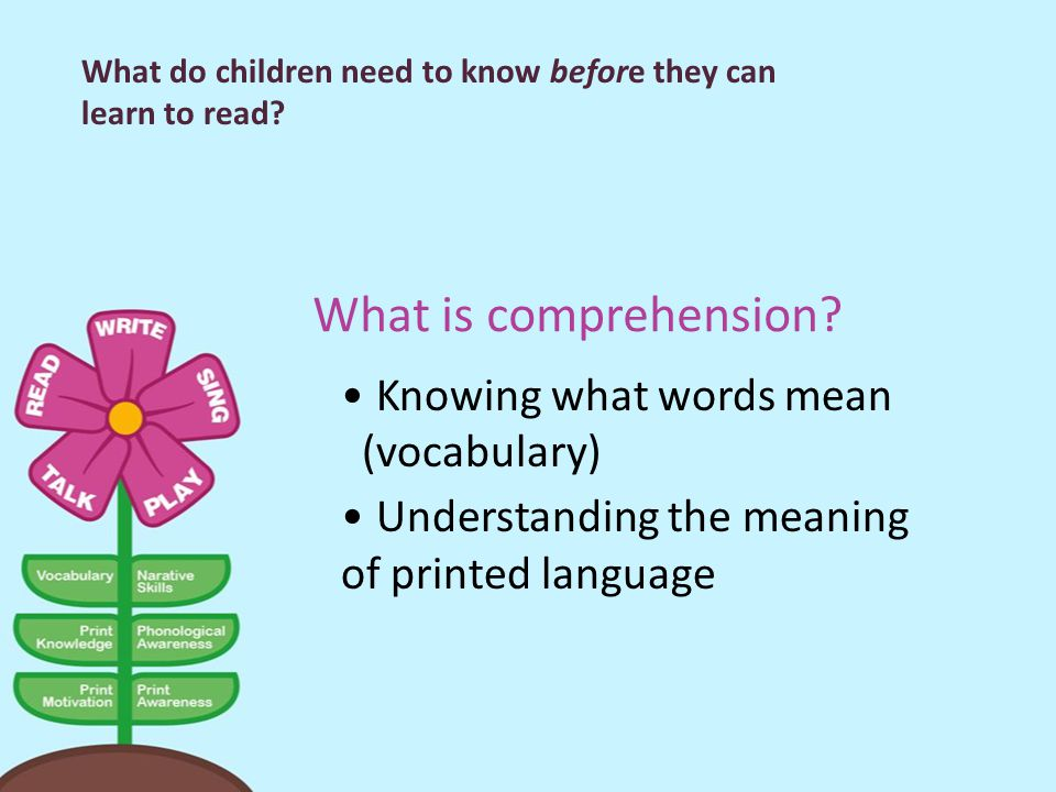 What is comprehension Knowing what words mean (vocabulary)