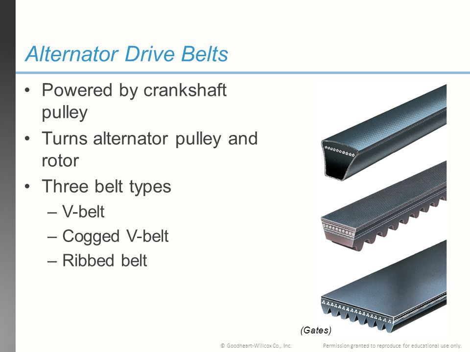 Alternator Drive Belts