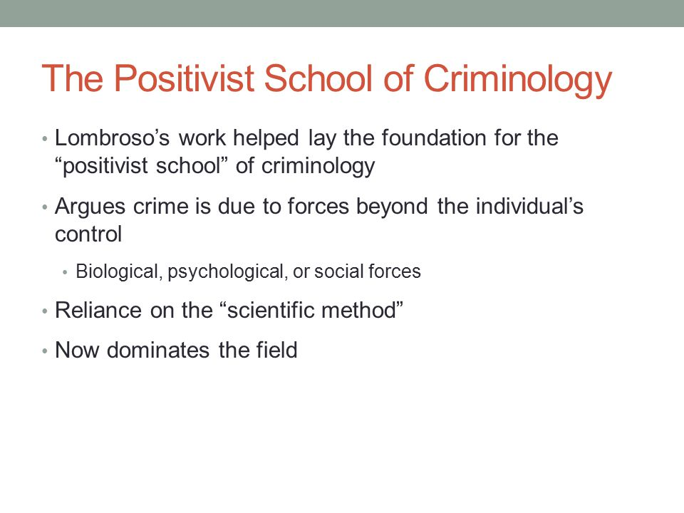 developments of schools of criminology Major sociological theoretical approaches in major sociological theoretical approaches in criminology chronologically preceding these later developments in.