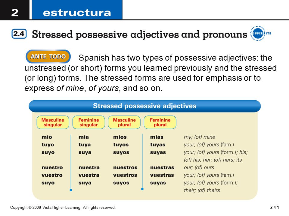Spanish has two types of possessive adjectives: the unstressed (or ...