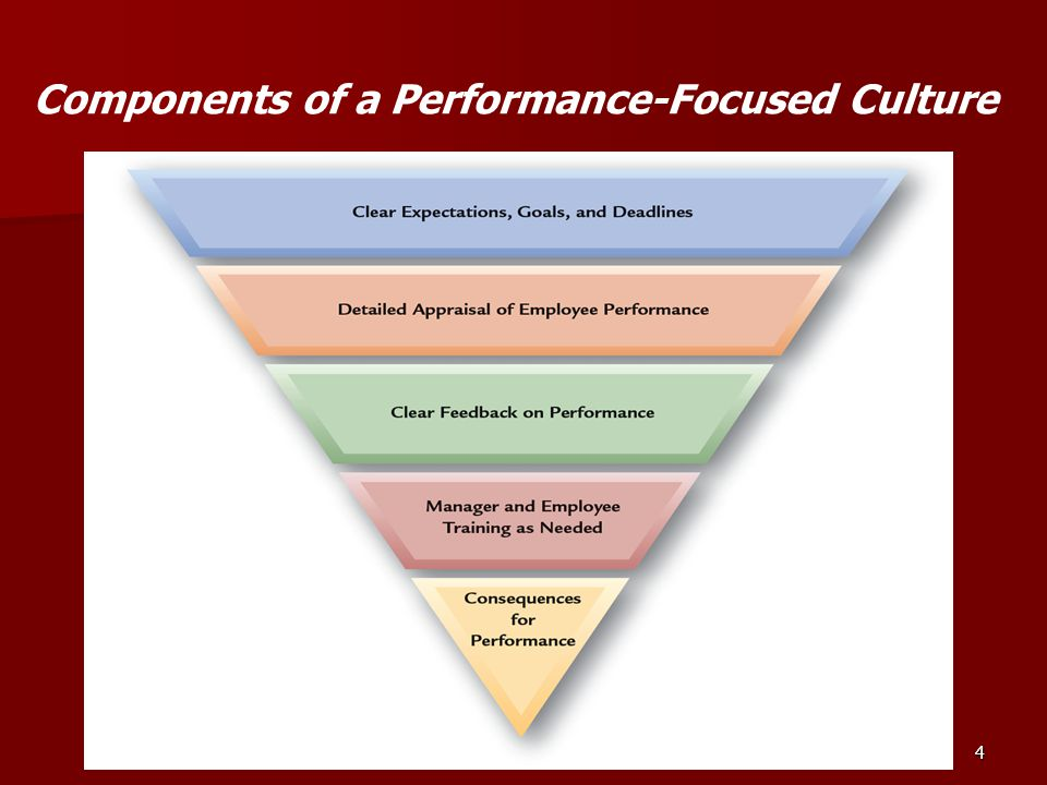 Components of a Performance-Focused Culture