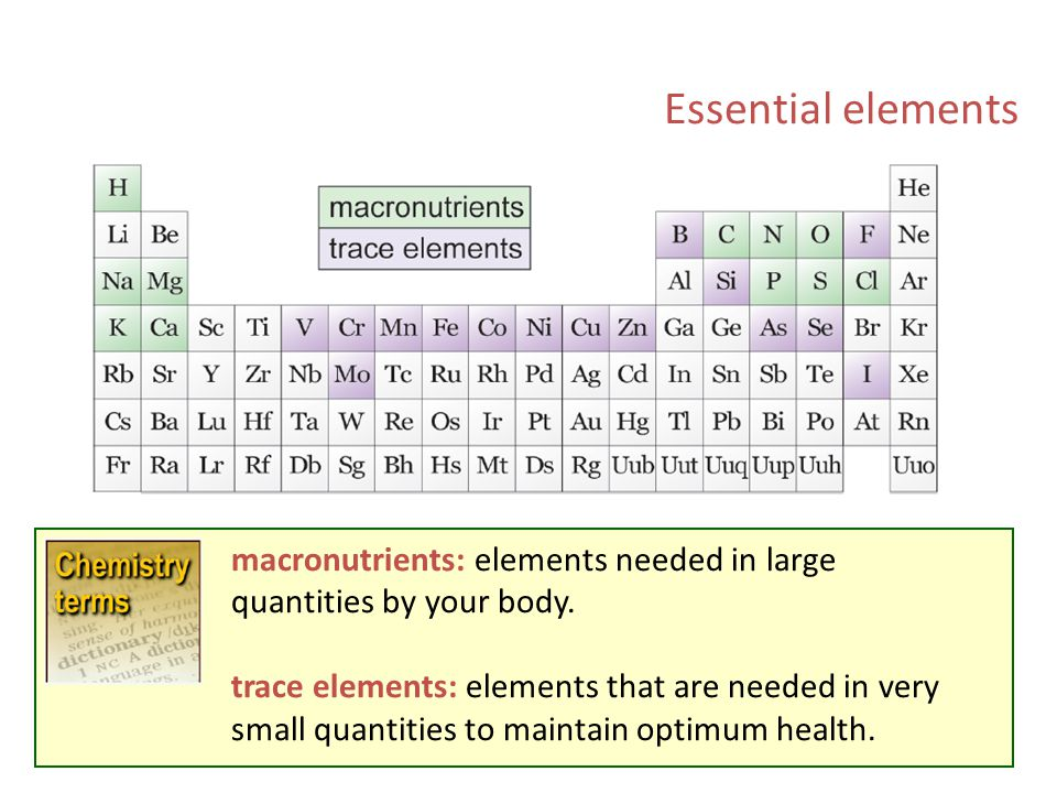 Ch 6 elements the periodic table ppt video online download essential elements macronutrients elements needed in large quantities by your body urtaz Choice Image