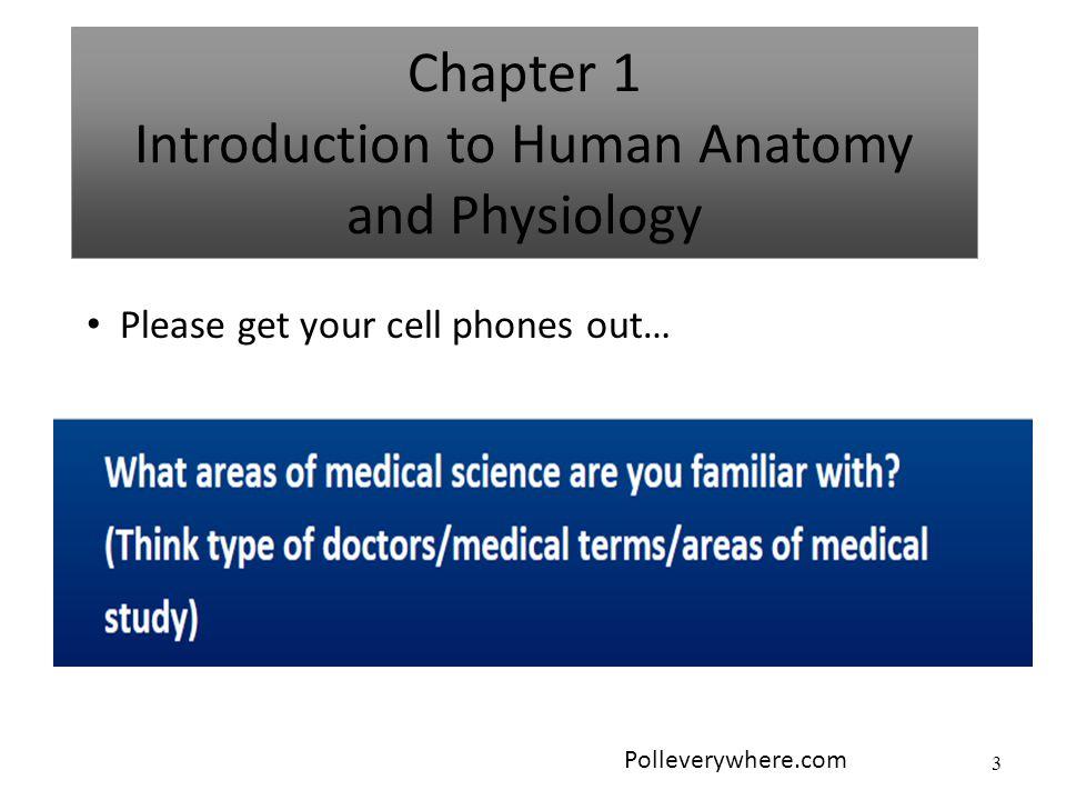 Großartig Anatomy And Physiology Vocabulary List Bilder ...