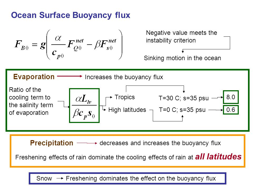 Ocean Surface Buoyancy flux