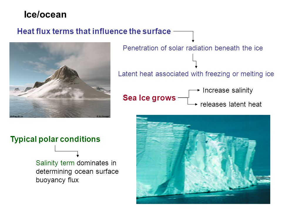 Ice/ocean Heat flux terms that influence the surface Sea Ice grows