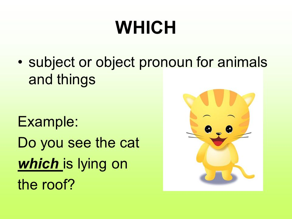 WHICH subject or object pronoun for animals and things Example: