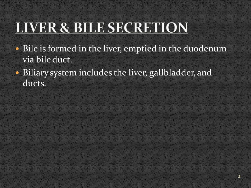 LIVER & BILE SECRETION Bile is formed in the liver, emptied in the duodenum via bile duct.