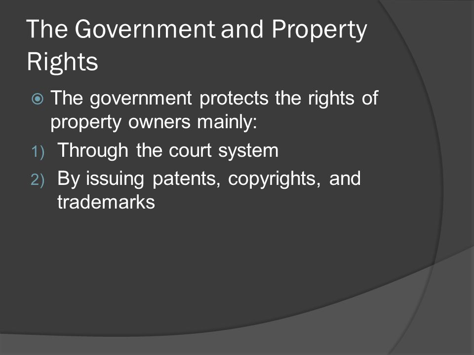 The Government and Property Rights