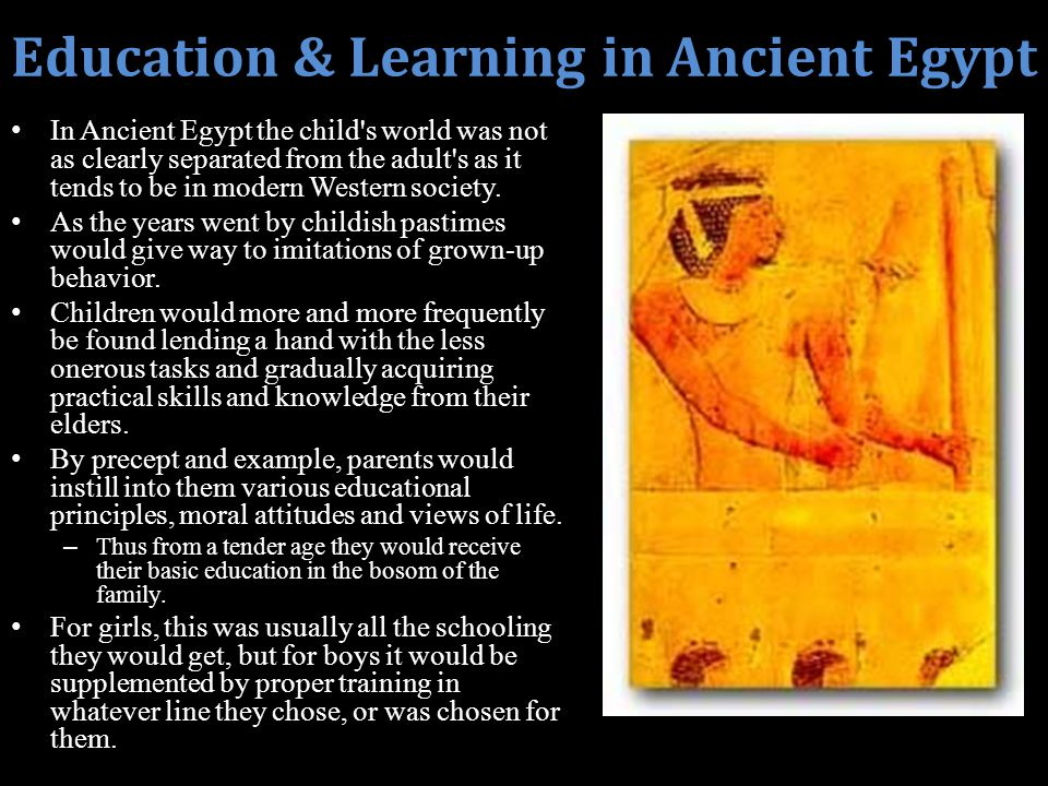 ancient egypt and education