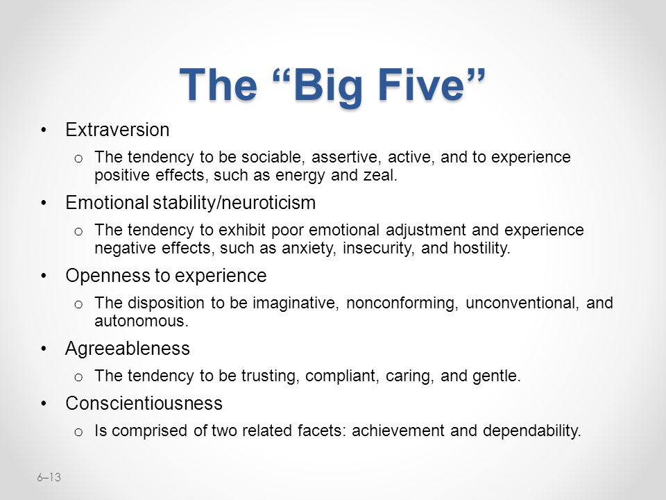 The Big Five Extraversion Emotional stability/neuroticism
