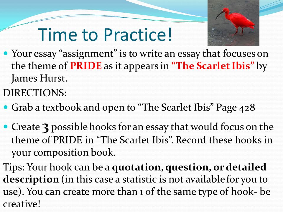 the scarlet ibis by james hurst 2 essay The scarlet ibis essayresponse to literature essay the scarlet ibis by james hurst in the fictional short story, the scarlet ibis by james hurst, we read about a little boy, named doodle who finds the will.