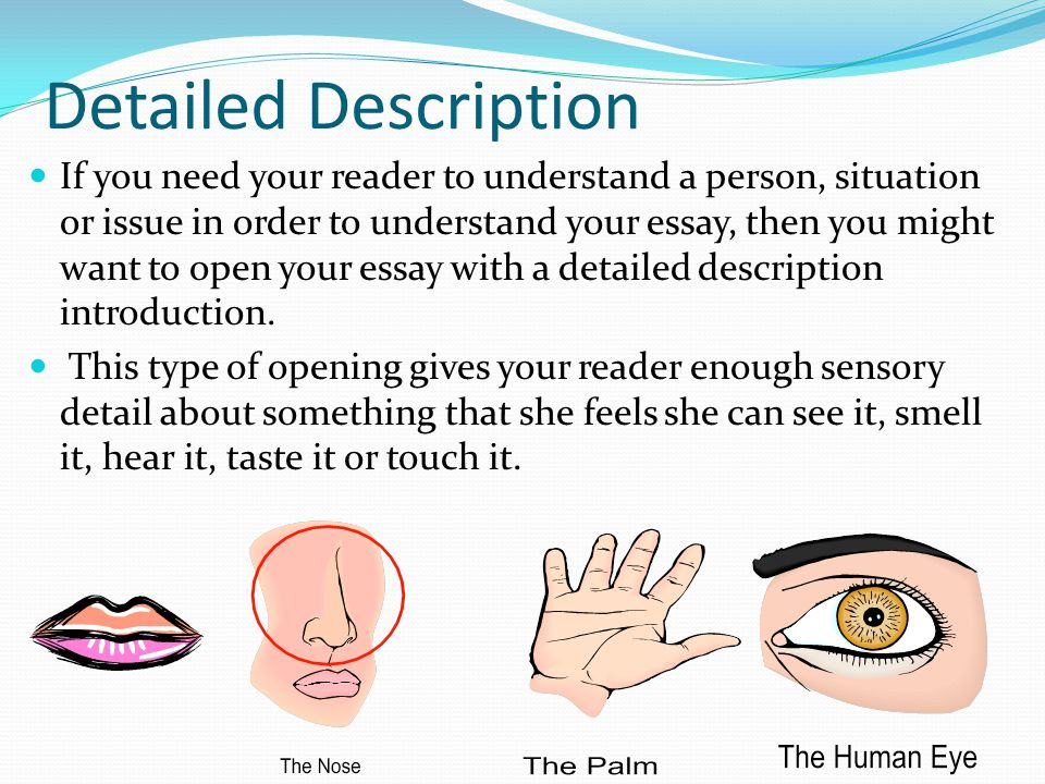 Essay on description of a person