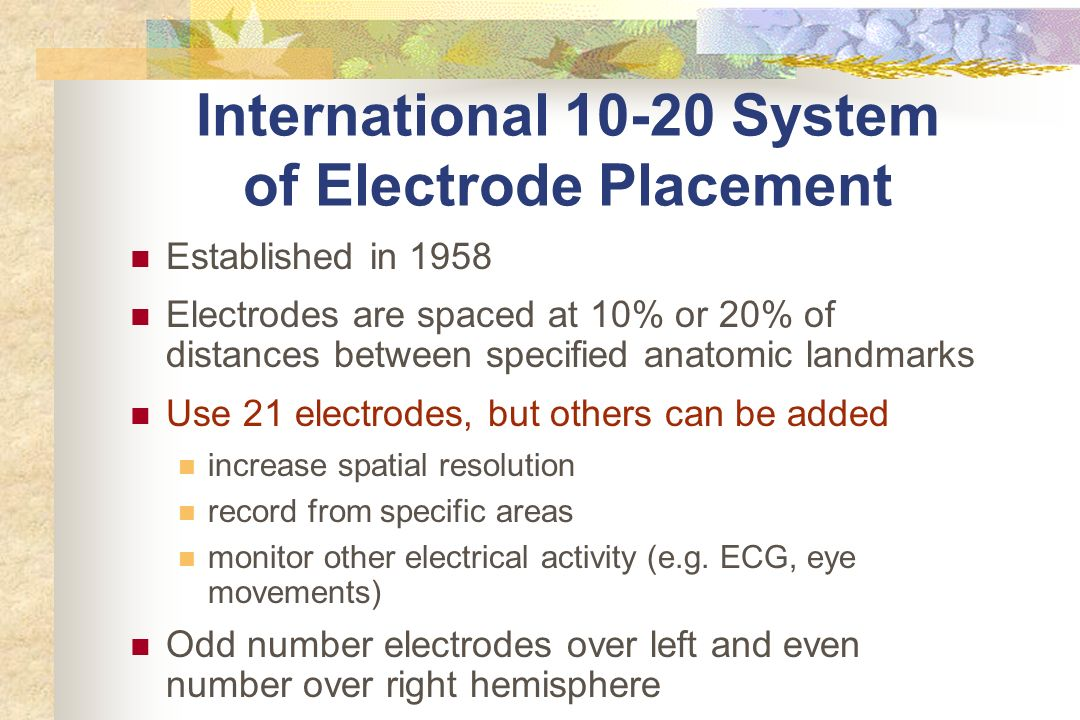 International 10-20 System of Electrode Placement