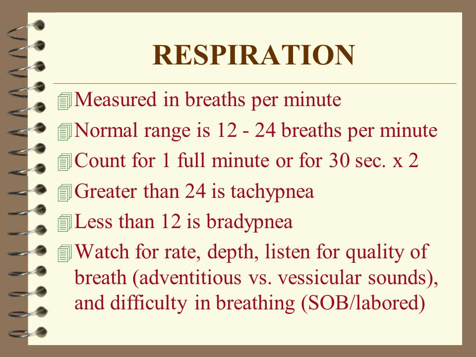 the vital signs  temperature  pulse  respirations and