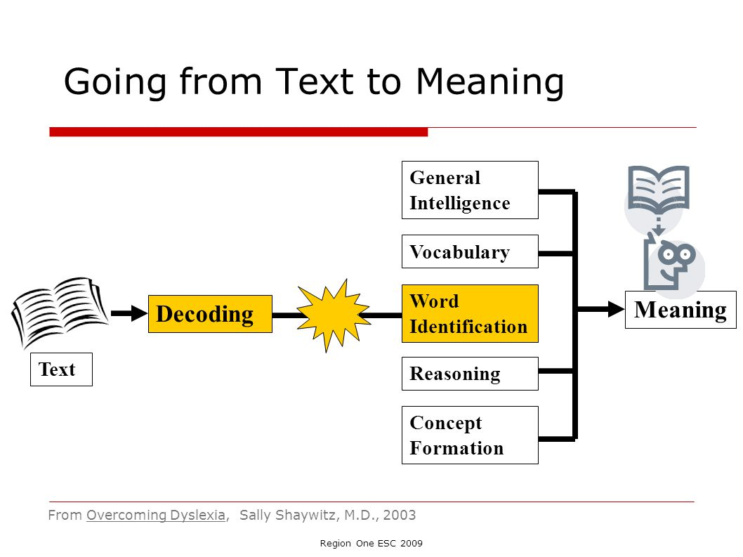 Going from Text to Meaning