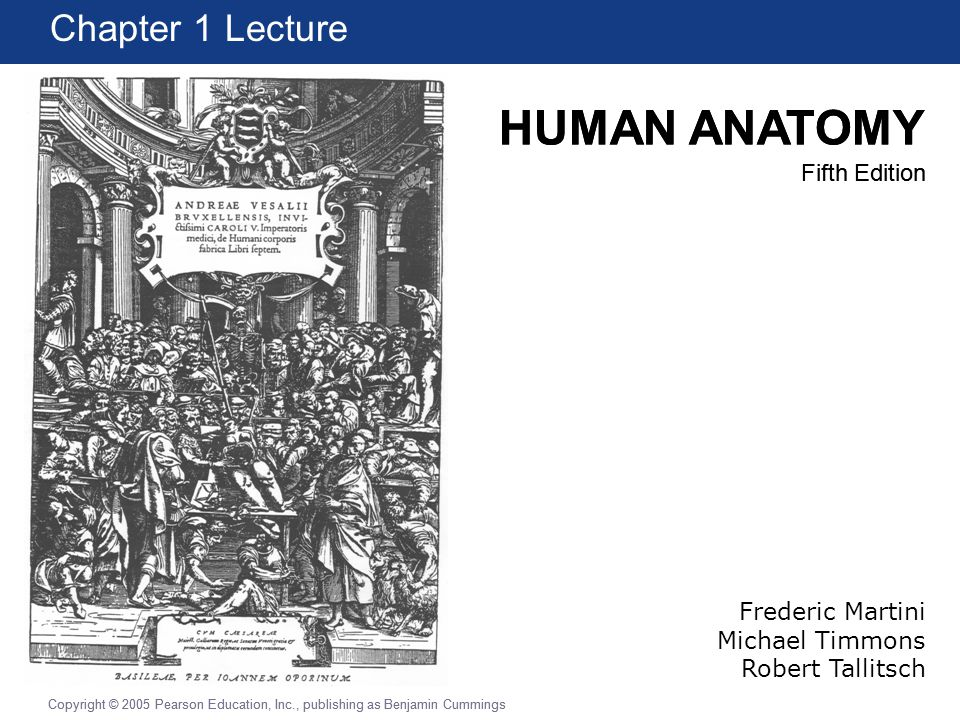 Chapter 1 Lecture Frederic Martini Michael Timmons Robert Tallitsch ...