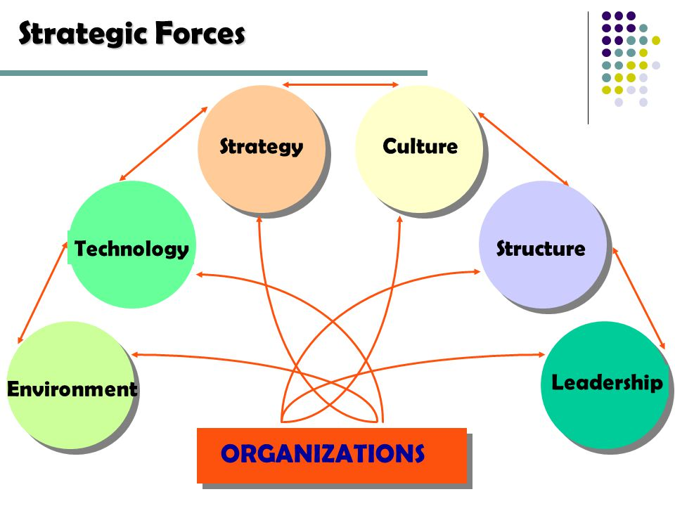 strategy and structure in organizations 45) if an international firm has a multidomestic strategy and a relatively high level of product diversity, the best choice for its organizational structure is worldwide matrix 46) if an international firm has a global strategy and a relatively low level of product diversity, the best choice for its organizational structure is.