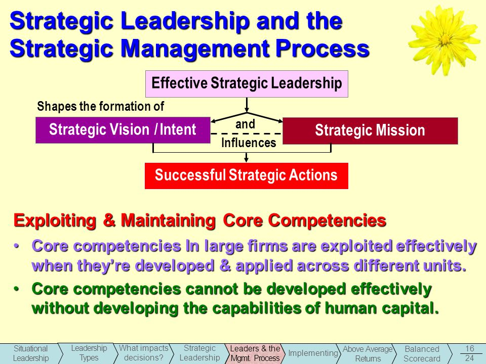 strategic management and leadership Strategic leadership and executive innovation influence 667 (1997) and the interactionist theory of woodman, sawyer, and griffin (1993) those theories offered.