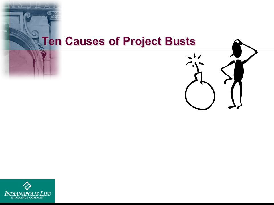 Ten Causes of Project Busts