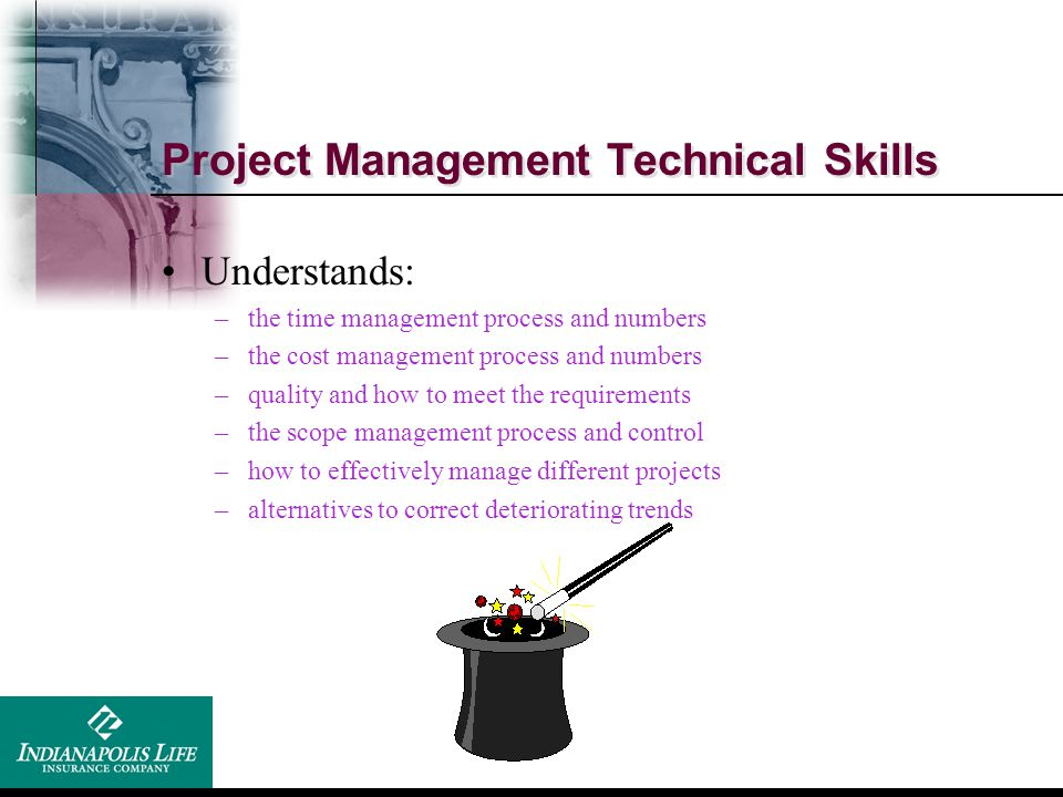 Project Management Technical Skills