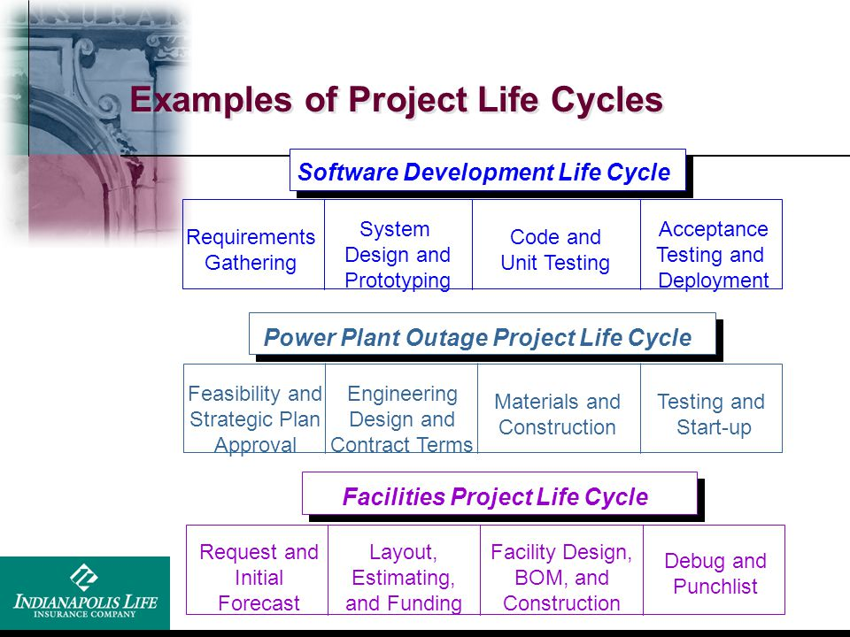 Examples of Project Life Cycles