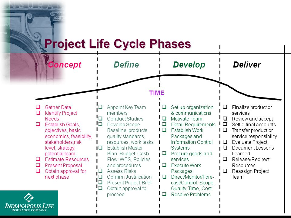 Project Life Cycle Phases