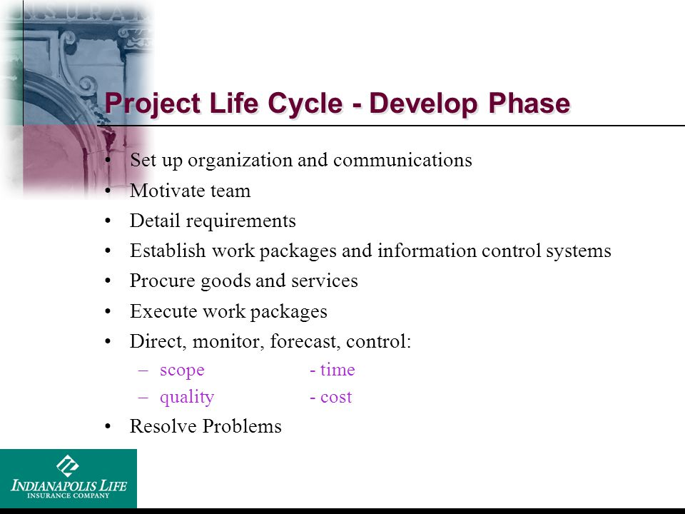 Project Life Cycle - Develop Phase