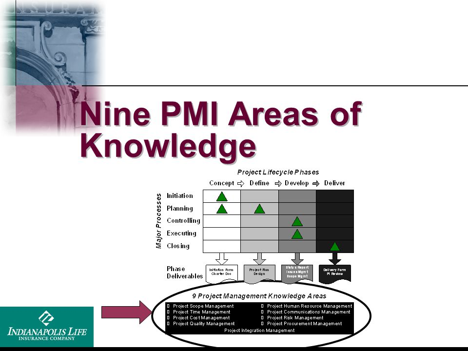 Nine PMI Areas of Knowledge