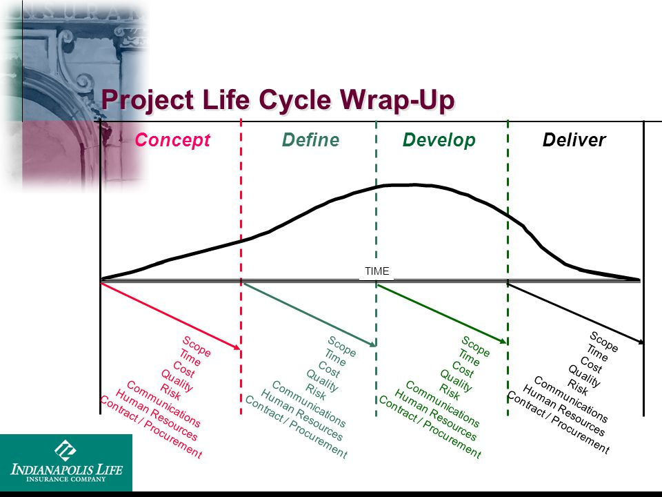 Project Life Cycle Wrap-Up