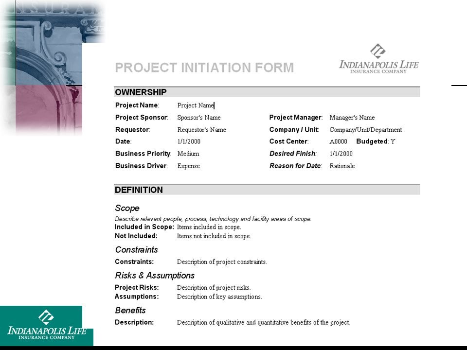 Show blank template of ILICO project initiation template form.