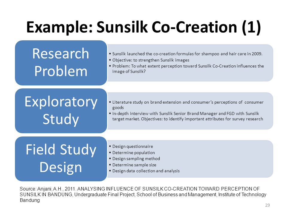 literature review of sunsilk shampoo