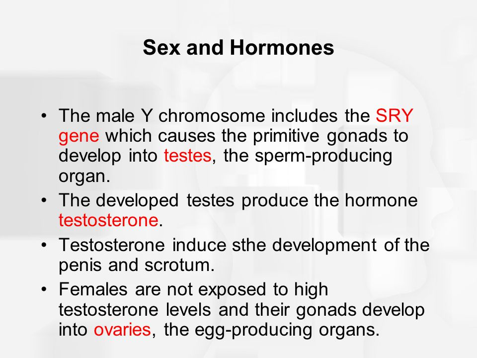 High testosterone levels and bisexual men