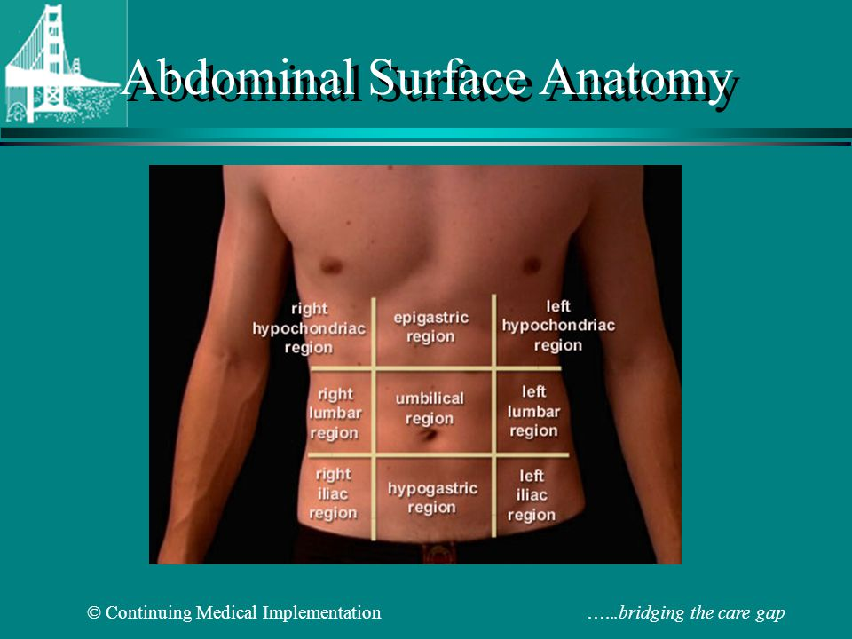 Abdominal Physical Examination Ppt Video Online Download