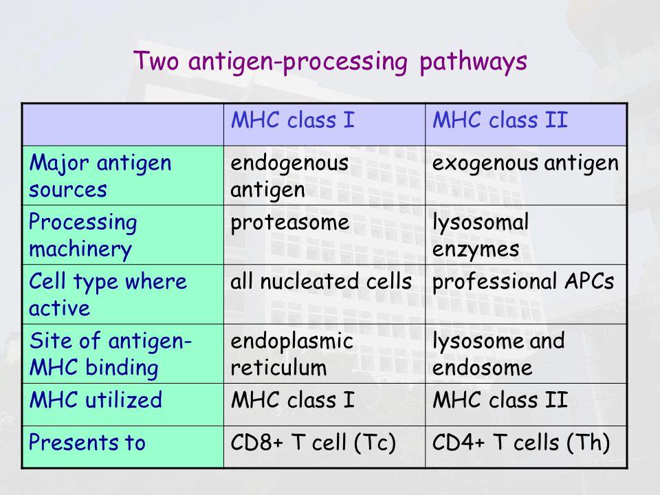 APC & Antigen pres...