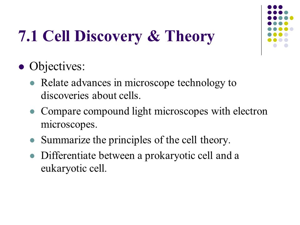 impact light and electron microscope cell theory Impact of light and electron microscope on cell theory the electron microscope enabled the viewing of cells at a higher magnification and resolution but is.