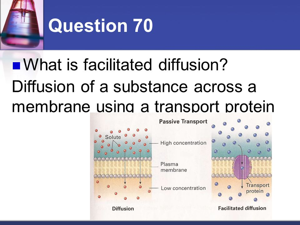 diffusion of a substance across a Simple diffusion and dissolution studies, to complex in vivo pharma- cokinetic   transport of drug substances across biological barriers, hopefully en- abling the.