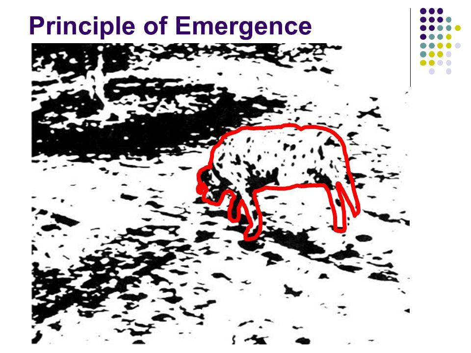 Principle of Emergence