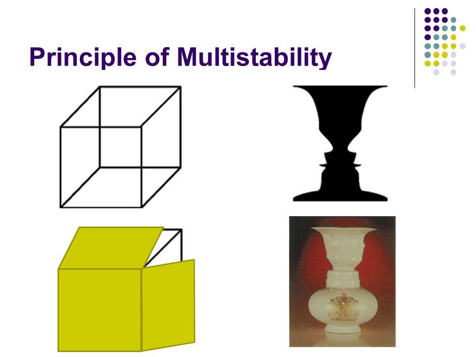 Principle of Multistability