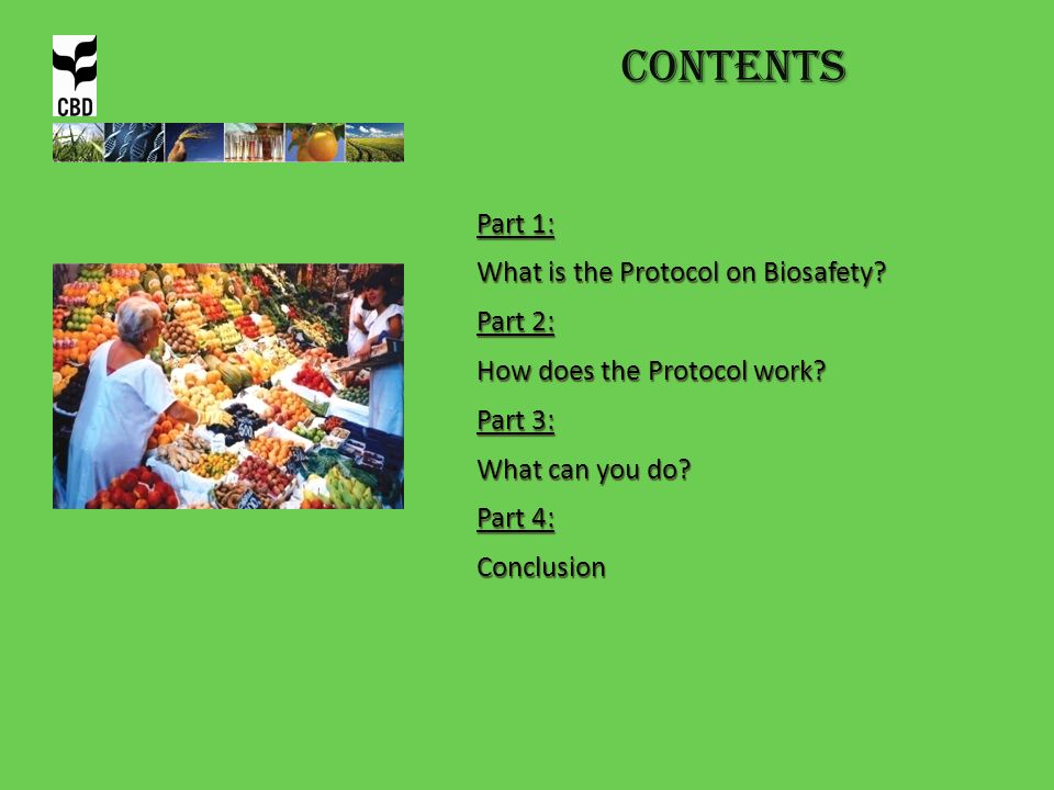Contents Part 1: What is the Protocol on Biosafety Part 2: