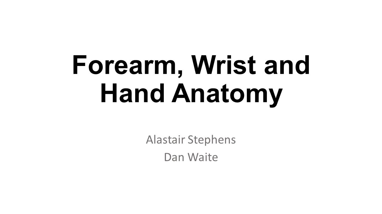 Forearm, Wrist and Hand Anatomy